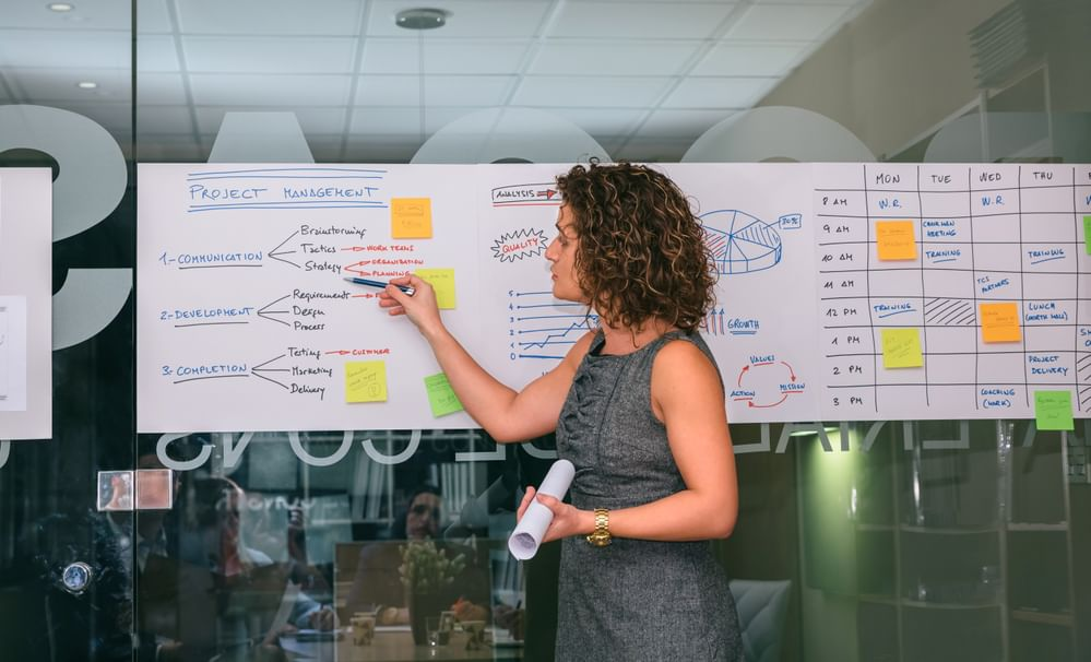A woman pointing out the steps in project management on a wall chart