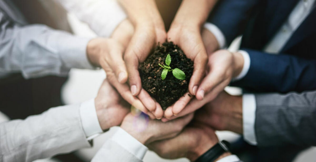 Why HR is the perfect place to start going green
