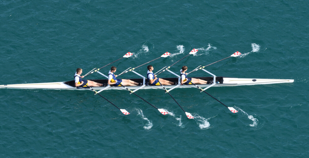 Creating high performing workplace cultures