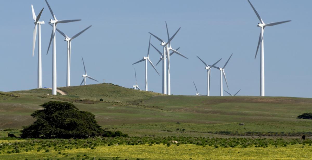 Australia's renewable energy opportunities