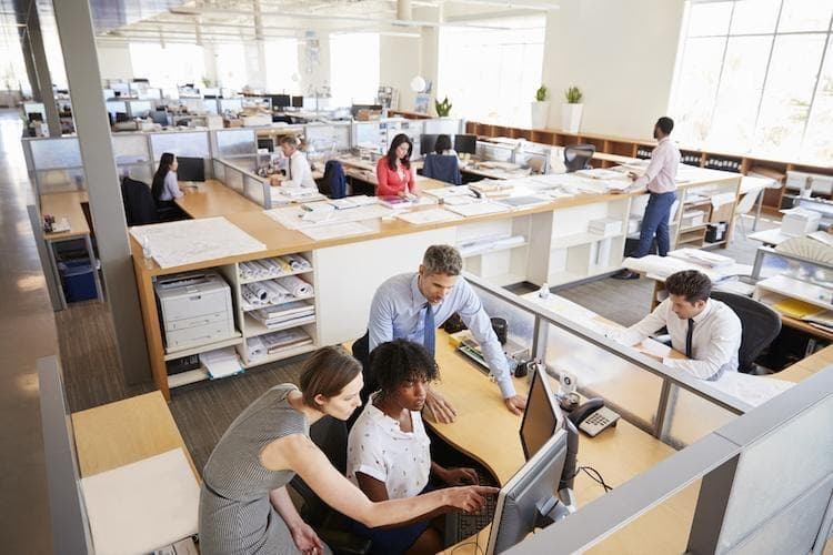 Employees working in an open office space environment.